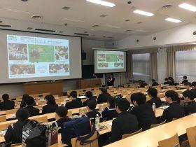 Ösztöndíj lehetőség az Oszakai Egyetemen